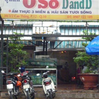 0 Số DandD – Cao Thắng