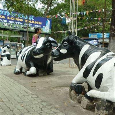 Trạm Dừng Chân Bò Sữa Long Thành