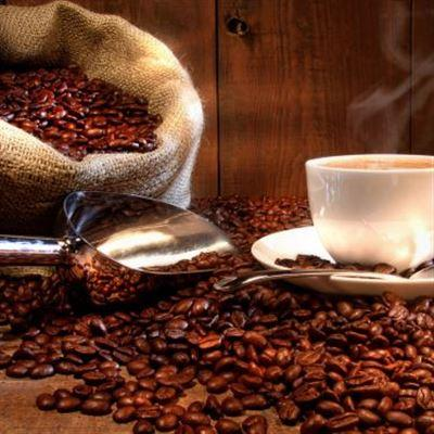 Trúc Cafe – Quốc Lộ 50