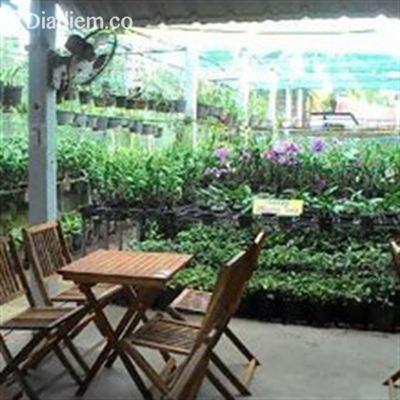 Hội Quán Phong Lan – Cafe Sách Phương Tùng – Tỉnh Lộ 884
